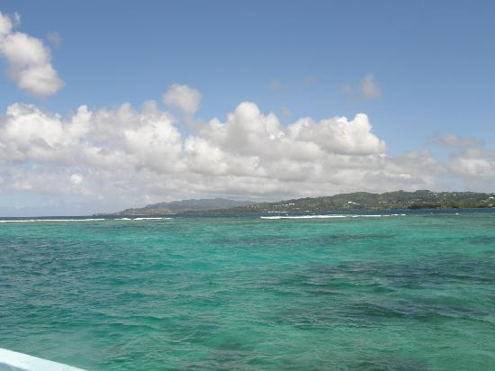 Traveling across Buccoo Reef & looking northeast