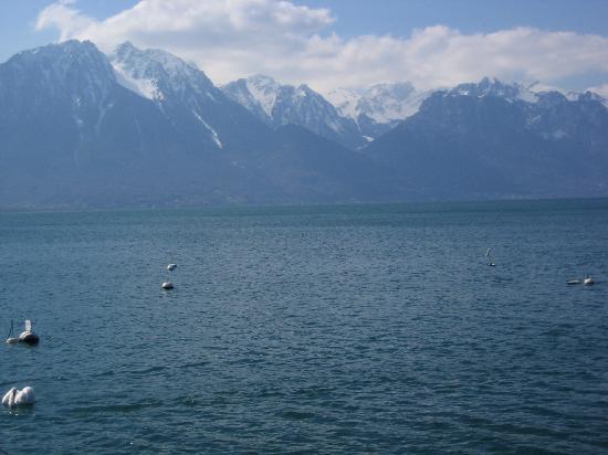 Hotel Royal Plaza Montreux: Lago
