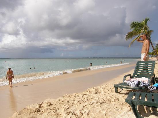 Pigeon Point Beach
