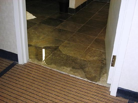 Saint Charles, IL: Flood in bathroom in room #3