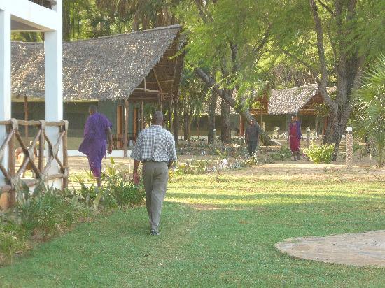 Eco-Lodge Kuwinda Tented Camp: panoramica