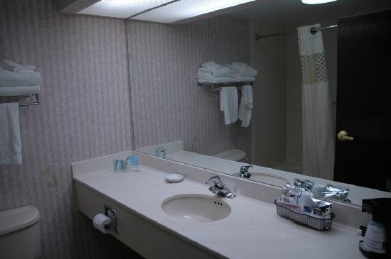 Hampton Inn Niagara Falls : Bathroom