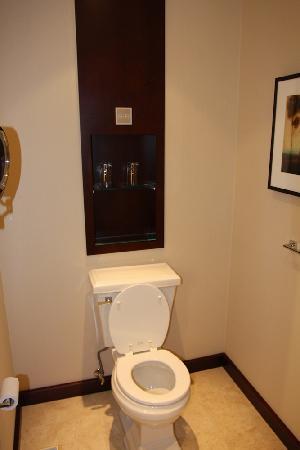St. Regis Hotel : Bathroom