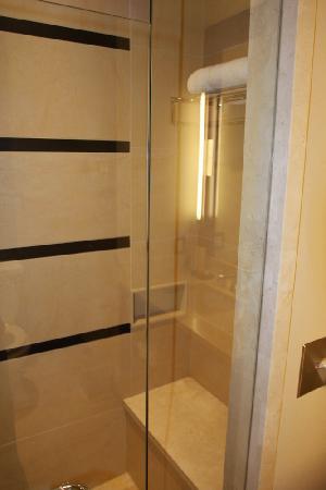 St. Regis Hotel : Shower