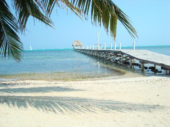 Pelican Reef Villas Resort: The pier off the beach