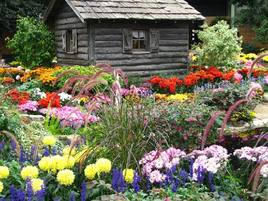 Mitchell Park Horticultural Conservatory (The Domes) : Cabin in the garden