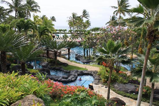 Grand Hyatt Kauai Resort Spa Pools Spas Lagoons