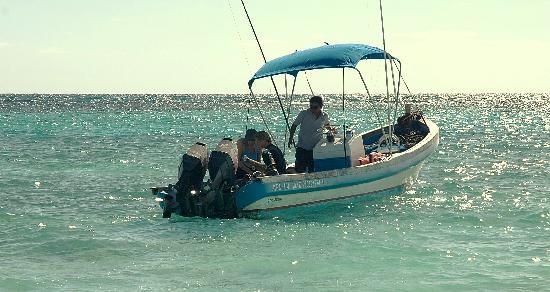 Bahia Divers: en route vers l'avanture...