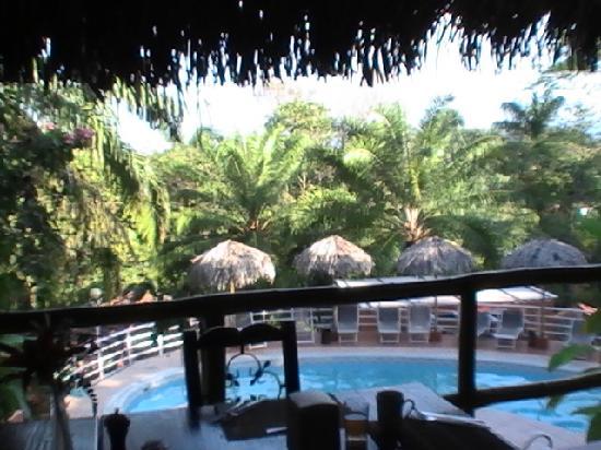 Hotel Villa Teca: Pool - from the restaurant