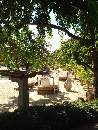 Club Med La Plantation d'Albion: Long Beach