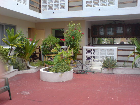 Hotel Mary Carmen: terraza