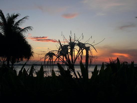 Nikoi Island: Nikoi Sunset
