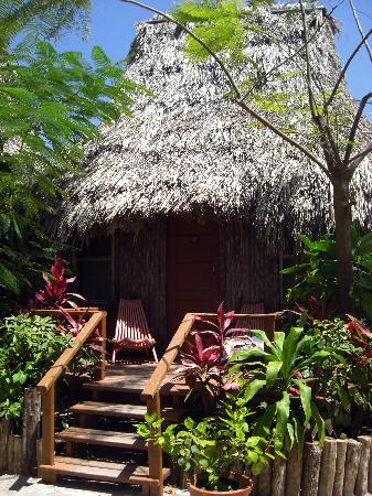 Garden hut Picture of Ramons Village Resort San Pedro