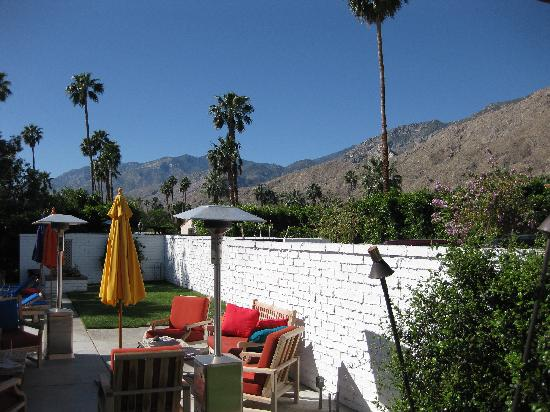 Casa Ocotillo: View from our patio