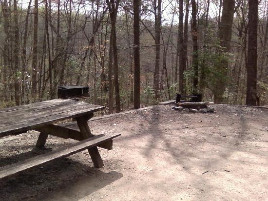 Natchez Trace State Park: Campsite 2 has fire pits, barbecue grills, and picnic tables.