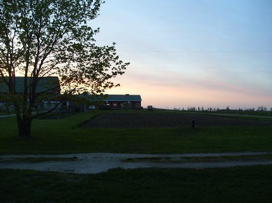Edencrest Farm B&B: sunset