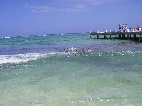Wyndham Reef Resort: The beach right at your door.