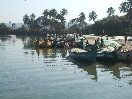 Alor Holiday Resort: Baga estuary