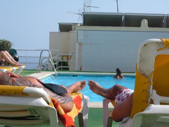 Marbella Inn: The roof Pool has nice views