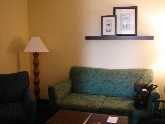 SpringHill Suites Dulles Airport : Room 514