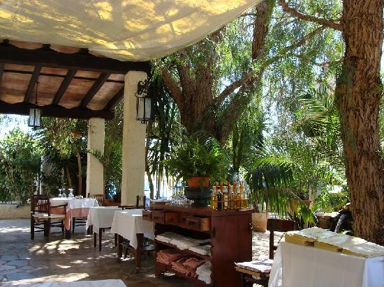 Restaurant Can Mateu: La preciosa terraza