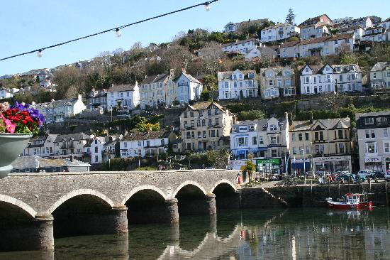 Our friendly seagull picture of fieldhead hotel looe - Hotels in looe cornwall with swimming pool ...