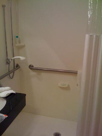 Holiday Inn Norwich: Accessible Bathroom