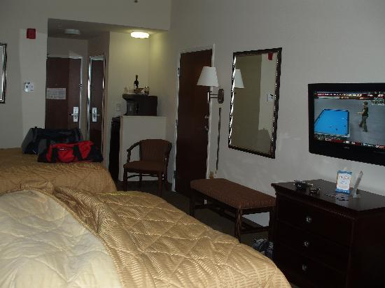 Comfort Inn & Suites Fort Myers: Hotel Room