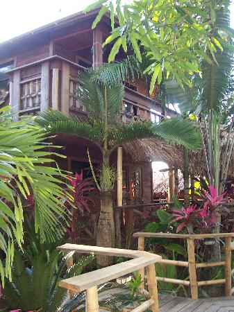 Tranquilseas Eco Lodge and Dive Center: We rented the up and downstairs