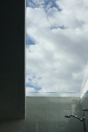 Queenstown Park Boutique Hotel: Shower has view of the sky!
