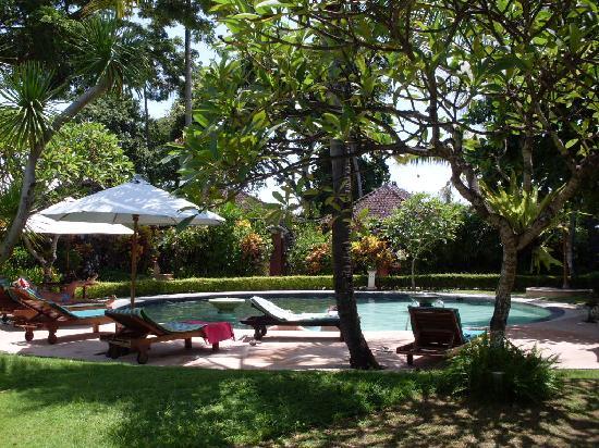 Sari Sanur Resort : Pool & Garden