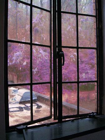 Park Hotel of Hot Springs : looking out the window at the lilacs