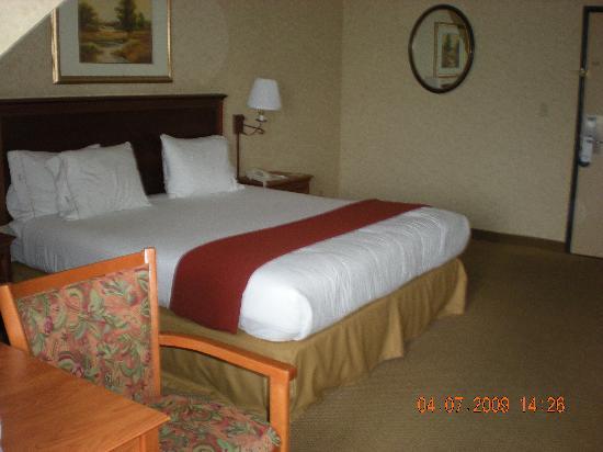 Holiday Inn Express Solvang: King room