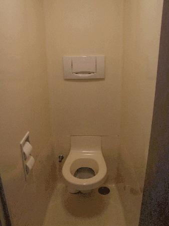 Ibis Budget Carcassonne La Cité: notice toilet seat