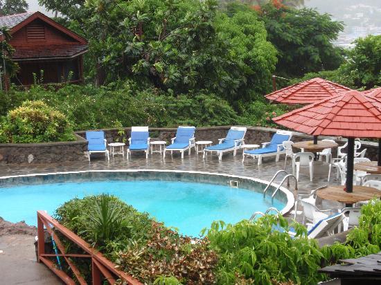 Hummingbird Beach Resort: The Pool
