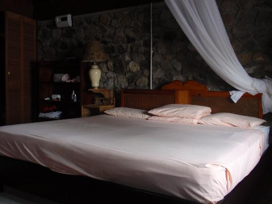 Hummingbird Beach Resort : Standard Room