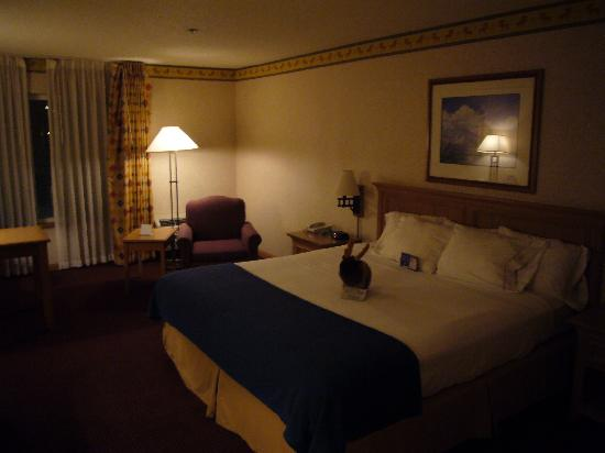 Holiday Inn Express & Suites Elko: comfortable room