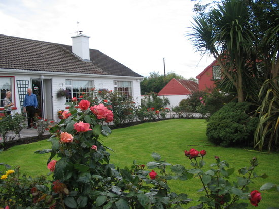 Listowel, Ireland: Gorgeous Rose Gardens
