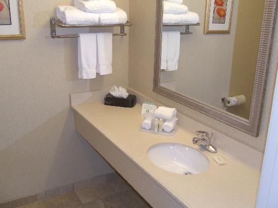 Holiday Inn Express Hotel & Suites Marysville: King Bedroom 5