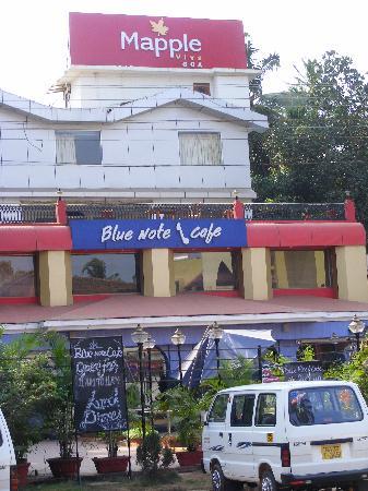 Mapple Viva Goa : Front view of Mapple