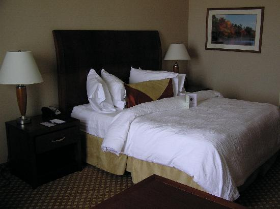 Hilton Garden Inn Oconomowoc : Great, adjustable firmness bed