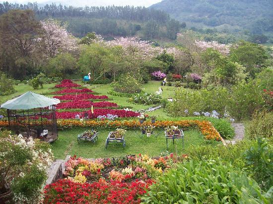 Mi jardin es su jardin public garden in boquete picture for Casas mi jardin