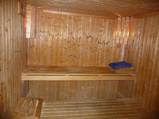 Hotel Spa Beau Sejour: Le sauna