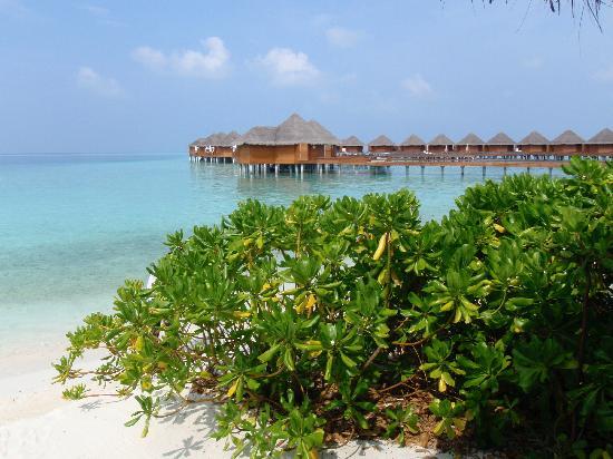 Baros Maldives: hotel baros