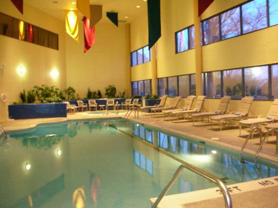 Chicago Marriott Schaumburg: Pool