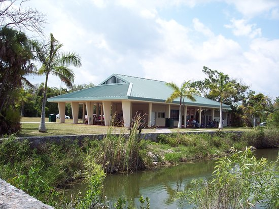 Royal Palm Visitor Center : View from Anhinga trail