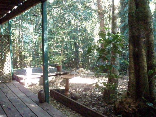 Paluma, Australia: Forest Mist B & B
