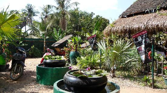 Palm Garden Lodge : la cour et le restaurant