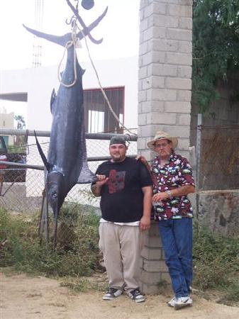 Martin Verdugo's Beach Resort: 225 lb blue marlin