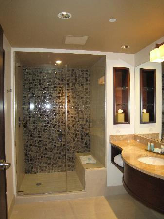 Blue Chip Casino and Hotel: Bathroom
